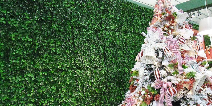 Siepe rampicante edera siepe artificiale siepi prezzi for Piante rampicanti finte